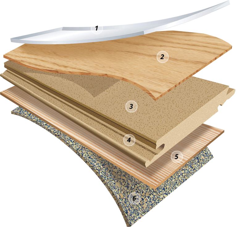 HardWood construction layers