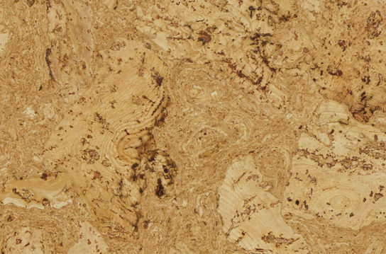 CCU91100-FSC-MX - Burl Natural