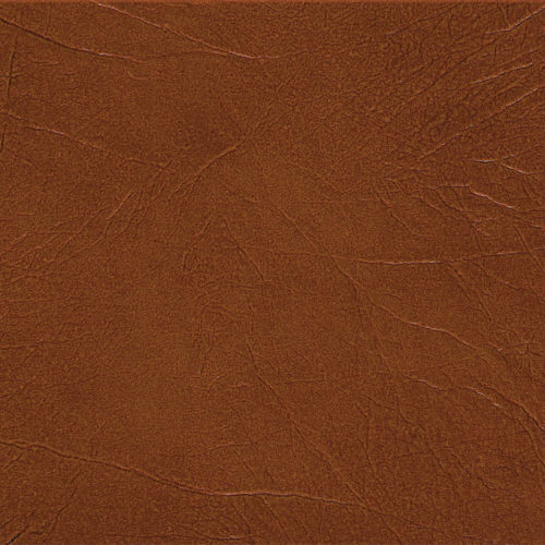 Leather Cognac Plank swatch